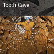Tooth Cave